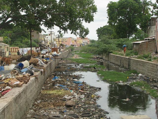 Экологическая проблема ингредиентное загрязнение